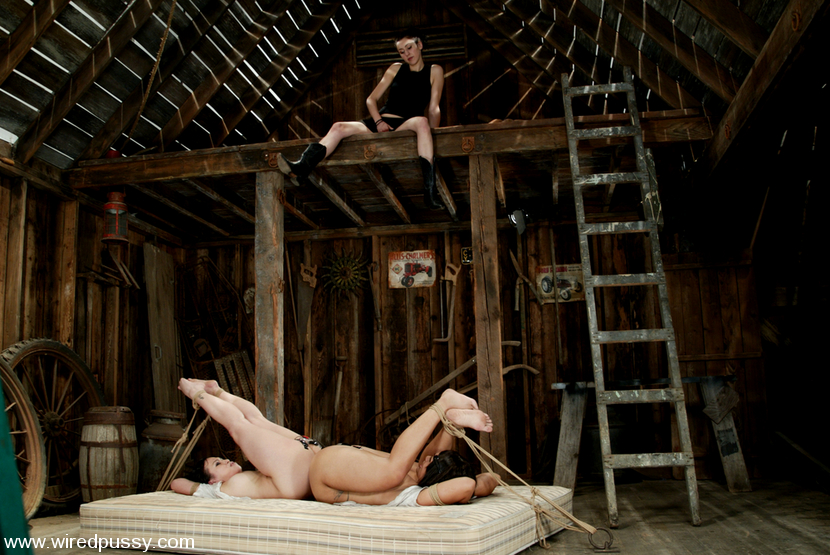 Wired Pussy Gallery 24