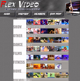 FlexVideo
