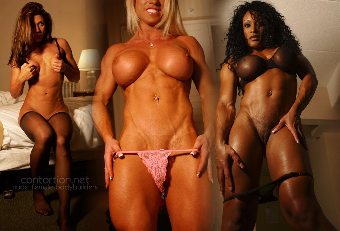 Body builder female gallery sex
